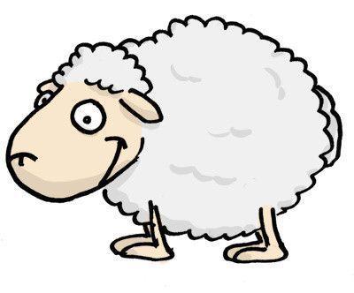 Mets un mouton - Image mouton humoristique ...